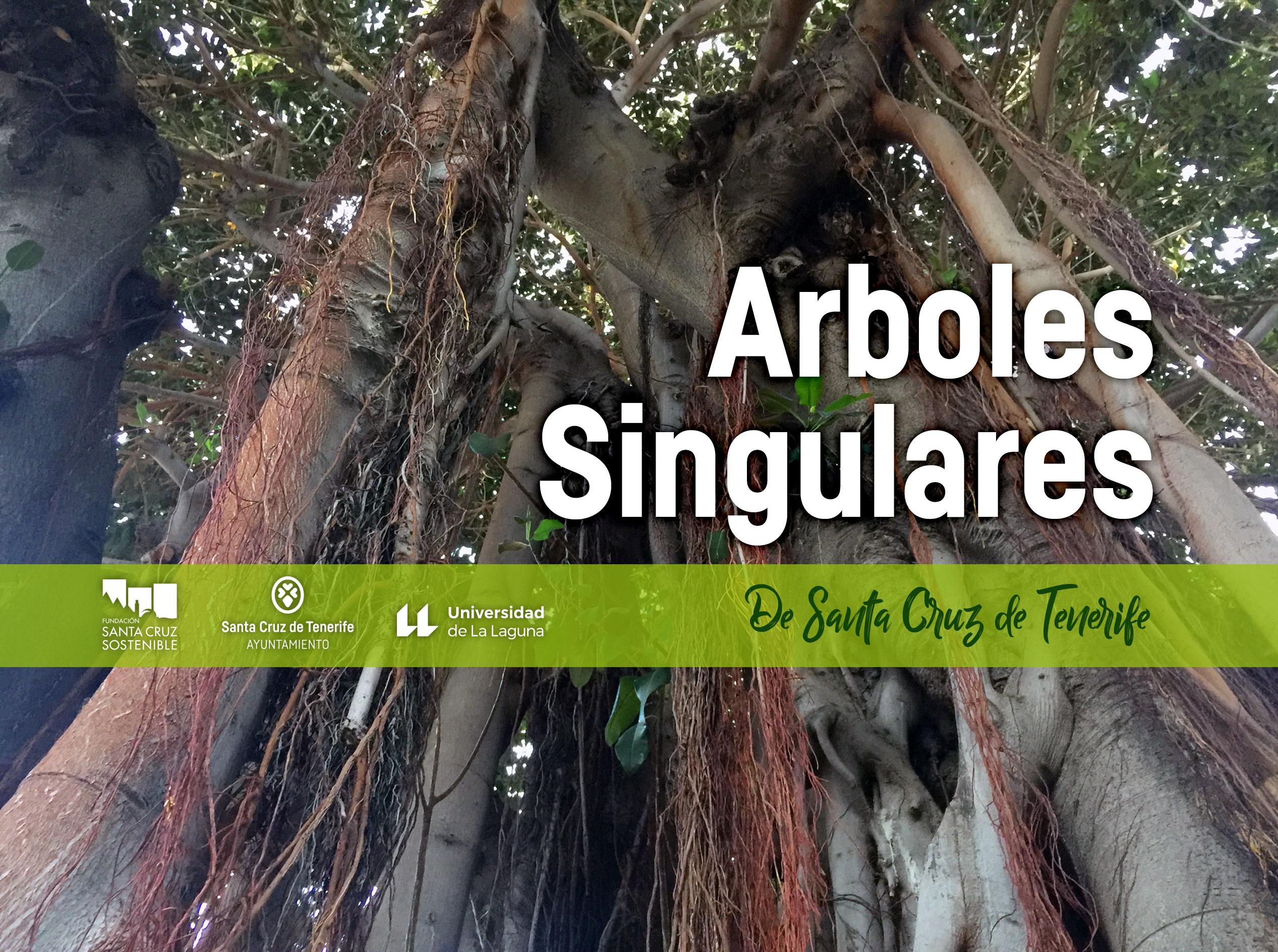 Guía Arboles Singulares